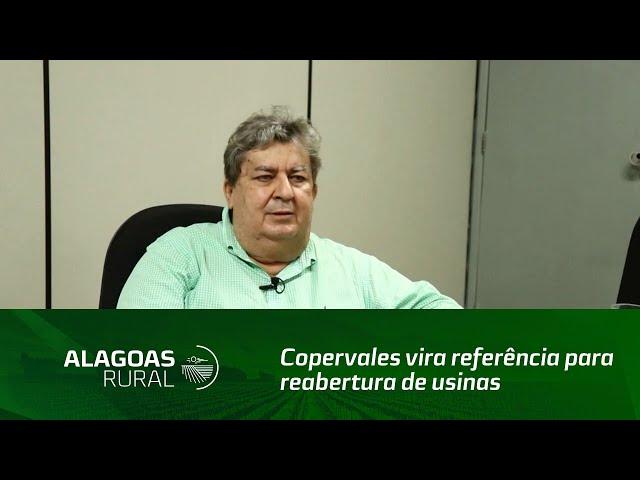 Copervales vira referência para reabertura de usinas