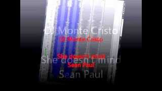 She doesn't mind (remix) by DJ Monte Cristo