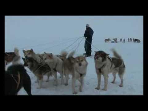 Silent Snow Trailer