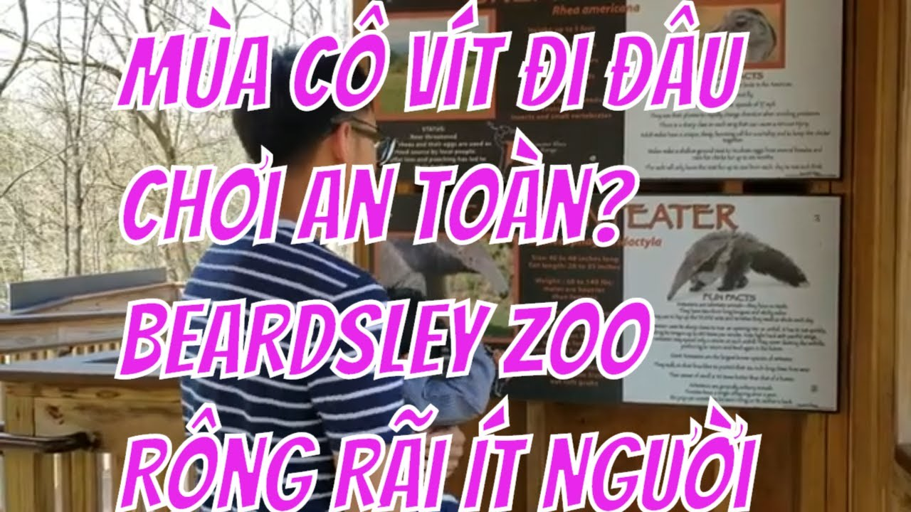 Mùa Cô Vít Đi Đâu Chơi An Toàn? Đi Beardsley Zoo. Thảo Cầm Viên Beardley Rộng Rãi Ít Người