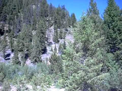 United States Forest Service Arson: http://usfspayettenationalforest.blogspot.com