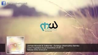 James Woods & Dallonte - Synergy (Namatria Remix)