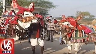 Special Story On GangiReddu Melam | Sankranti Festival | V6 News