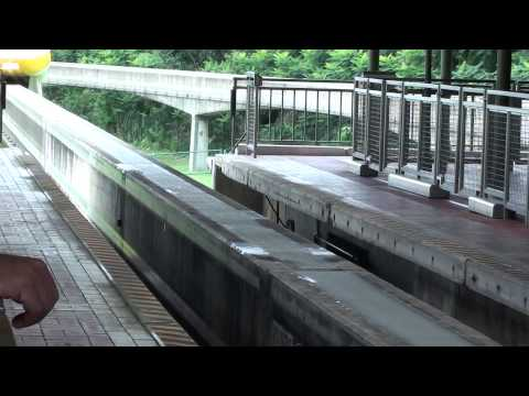 Walt Disney World Resort: Monorail Magic Kingom - Contemporary Resort