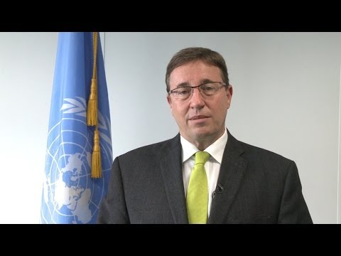 UNEP Executive Director Achim Steiner: Annual Report 2013