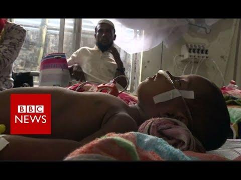 Children of the Rohingya crisis - BBC News