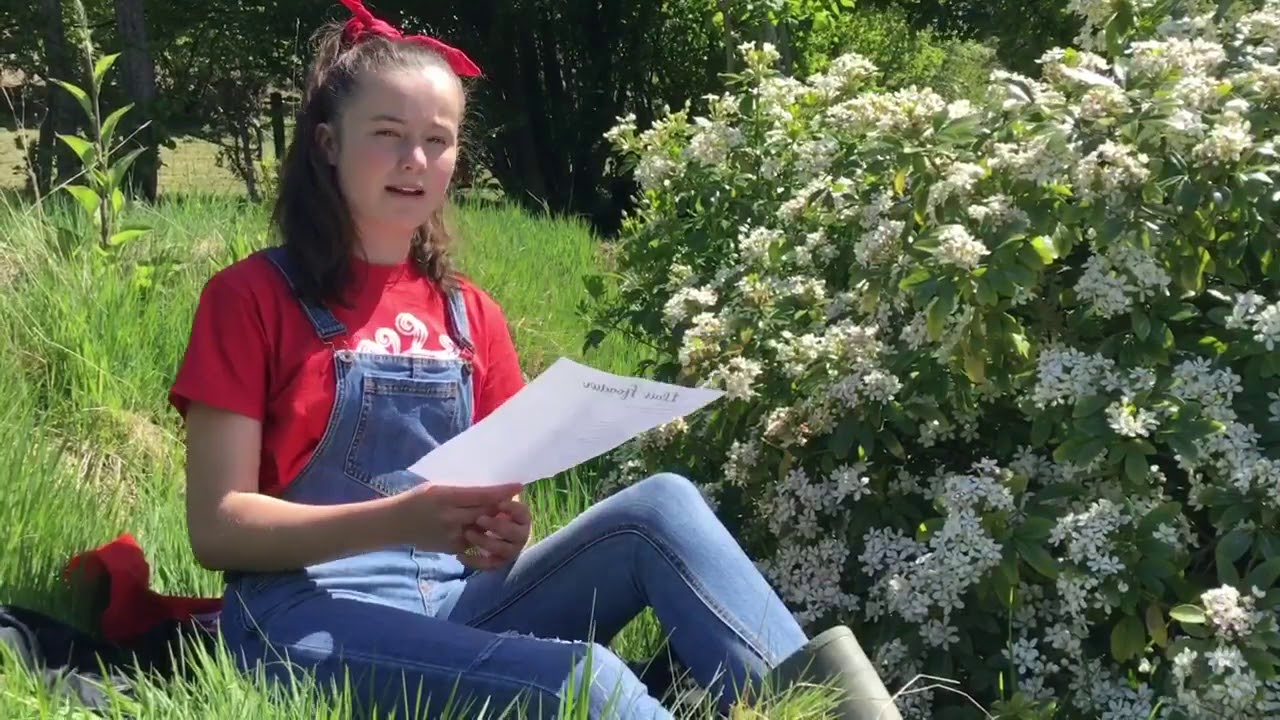 Fideo: Blodeugerdd 2020 - Cadi Glwys