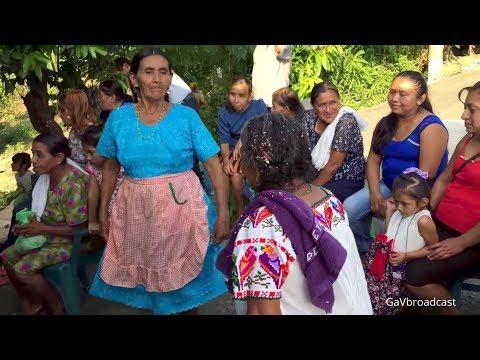 Fiesta en la Huasteca Veracruzana (Puro Son Huasteco)