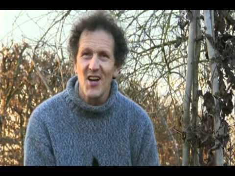 Monty Don Demonstrates Spring Clematis Pruning