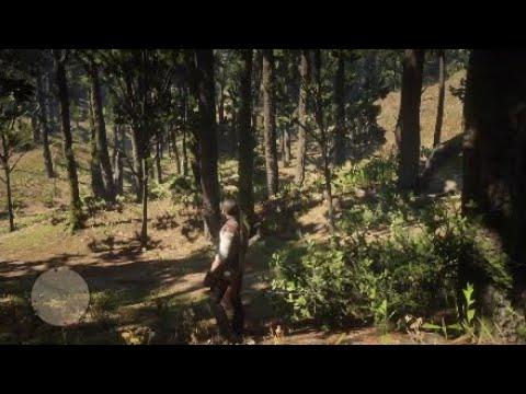 Carte Au Tresor Otis Miller.Red Dead Redemption 2 Carte Au Tresor Dechiree Revolver Dore D