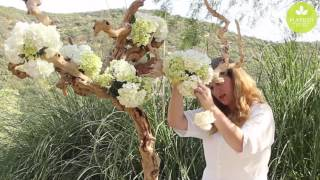 Inspired Floral Design with Beth O