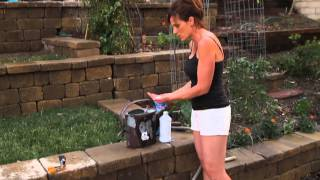 Tomato Fertilizing Tips - Quick, Simple, Inexpensive