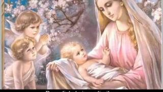 Ave Maria (Latin lyrics w/ English translation)