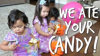 WE ATE ALL YOUR HALLOWEEN CANDY! - November 01, 2016 - ItsJudysLife Vlogs