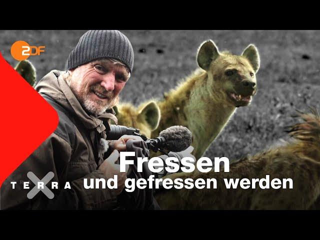Kreislauf des Lebens?   Andreas Kieling   Ganze Folge   Terra X