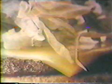 1967 McDonald's Commercial - Big Mac Introduction thumbnail