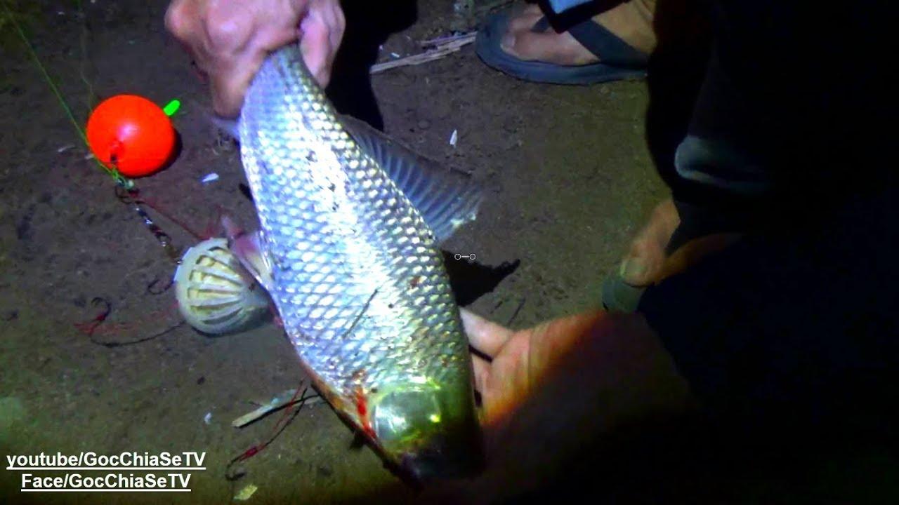 Câu Cá Ở Đảo Hoang - tập 2 ☆ Góc Chia Sẻ