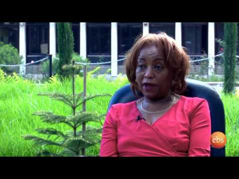 Who's Who: Interview with  Dr. Aster Shewaamare