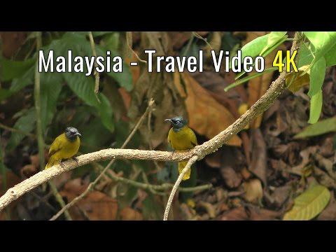Malaysia - Travel Video  4K  Part 2