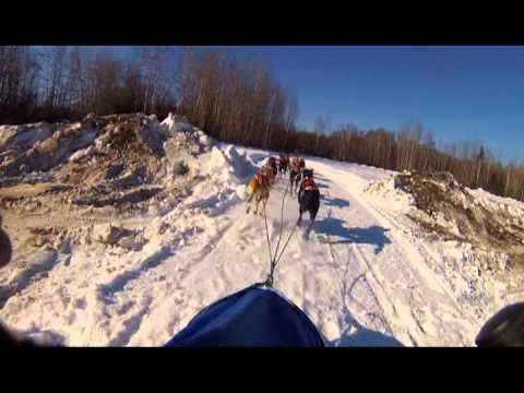 Open North American Championship Sled Dog Race Day 2