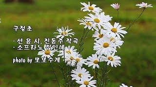 구절초/선 용 시, 진동주 작곡/소프라노 김인혜 & photo by 모모수계