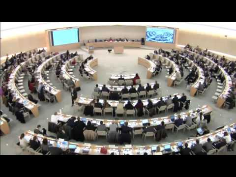 SMHRIC statement interrupted by Chinese delegation at the UN Forum on Minority Issues (Original)