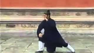 WUDANG TAICHI Quan 64 Forms by Wudang Master Tian Liyang