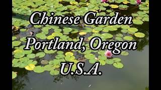 Lan Su Chinese Garden Portland, Oregon TRAVEL VIDEO!