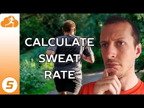 Why you ought to Know Your Sweat Rate How you can Calculate It