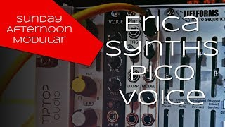 Erica Synths Pico Voice Introduction