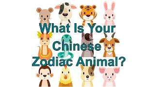 What Is My Chinese Zodiac Animal? Chinese New Year 2018