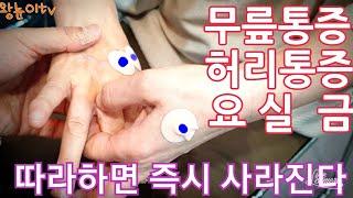 461. 무릎통증, 허리통증, 요실금, 손가락관절염  …