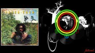 Peter Tosh - Legalize It (Audiomission RMX)
