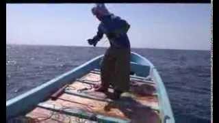 صيد سمك الجيذر (أبو شامس السنيدي)