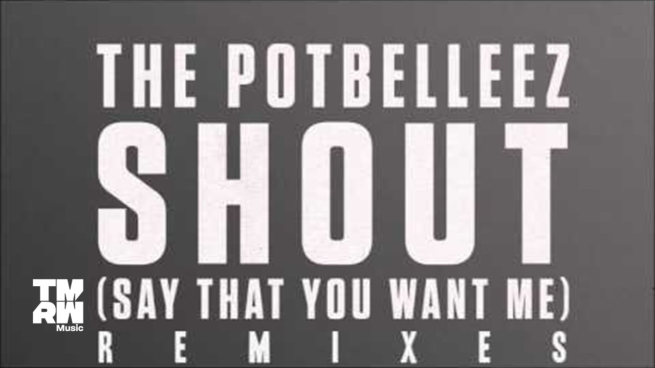 Download The Potbelleez - Shout (Say That You Want Me) (Binary Club Mix)