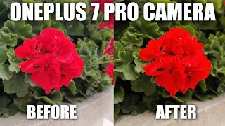 OnePlus 7 Pro Camera Review After Update (9.5.7)