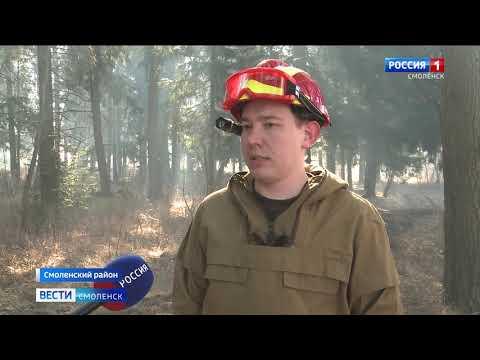 На территории Смоленской области введен противопожарный режим