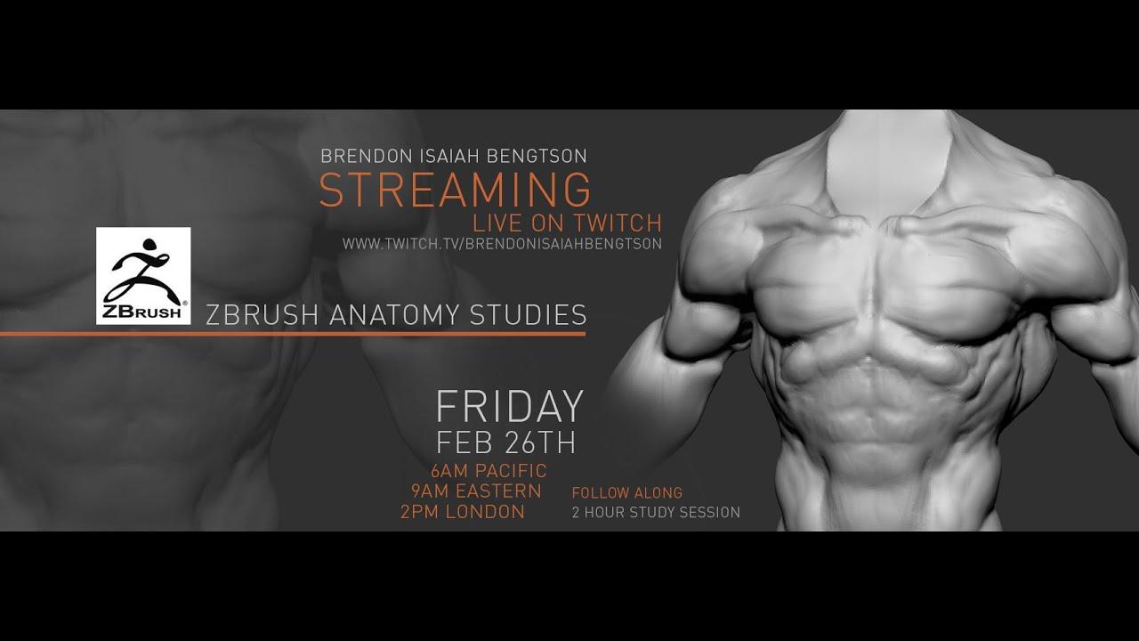 ZBrush Anatomy Studies - Teaching Stream - YouTube