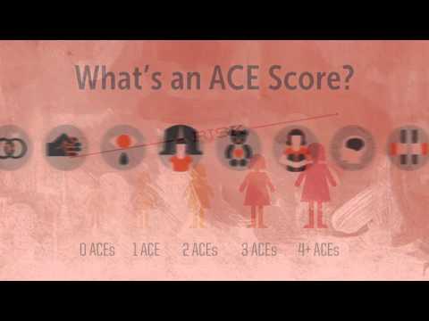 ACES Primer HD