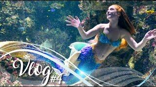 MERMAID VLOG #4 | La sirène de Planet Ocean Montpellier