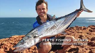 Spanish Mackerel: Land Based Game Fishing with Perth Fishing Safaris