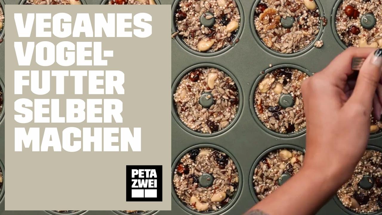 So Macht Ihr Veganes Vogelfutter Selber Peta Zwei Youtube