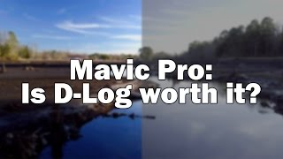 Shooting in D-Log - DJI Mavic Pro