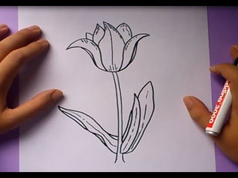 Como Dibujar Una Flor Paso A Paso 3 How To Draw A Flower 3 Youtube