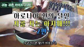 귀농귀촌 라이프 | korea country life …