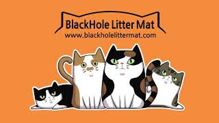 Blackhole Litter Mat 블랙홀 고양이화장실매트 물세척하기