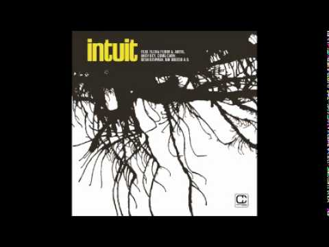 Intuit - A Hard Night's Day