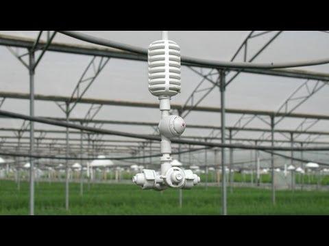 Humidificador para invernaderos y granjas youtube - Humidificar el ambiente ...