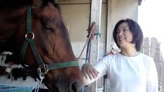水を飲むと、まったりと自分の世界に入ってしまう馬です。