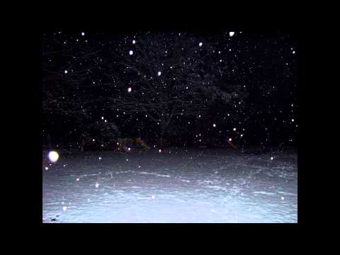 William Basinski - Silent Night